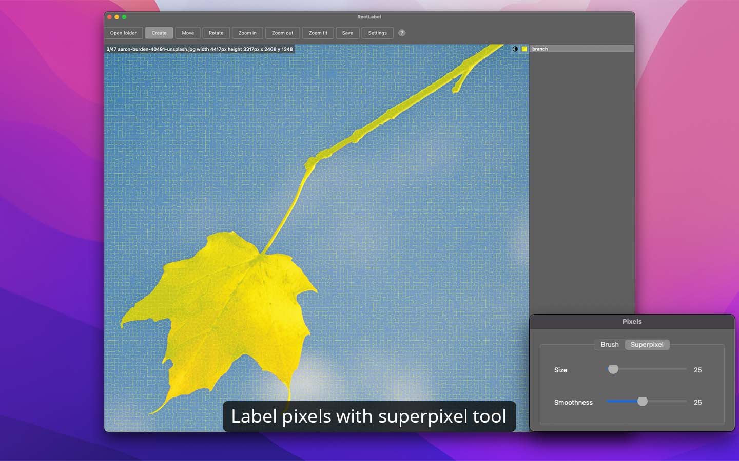 Label pixels with brush and superpixel tools